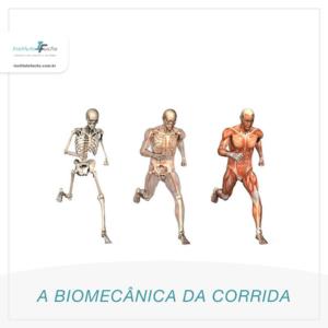 A BIOMECÂNICA DA CORRIDA