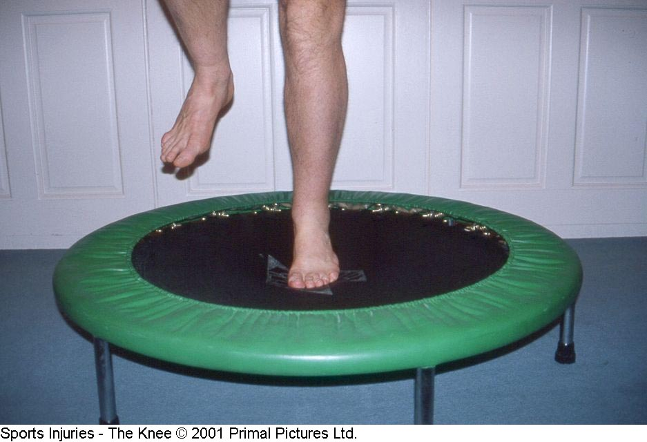 Fig. 19. Mini-trampolim / Cama elástica
