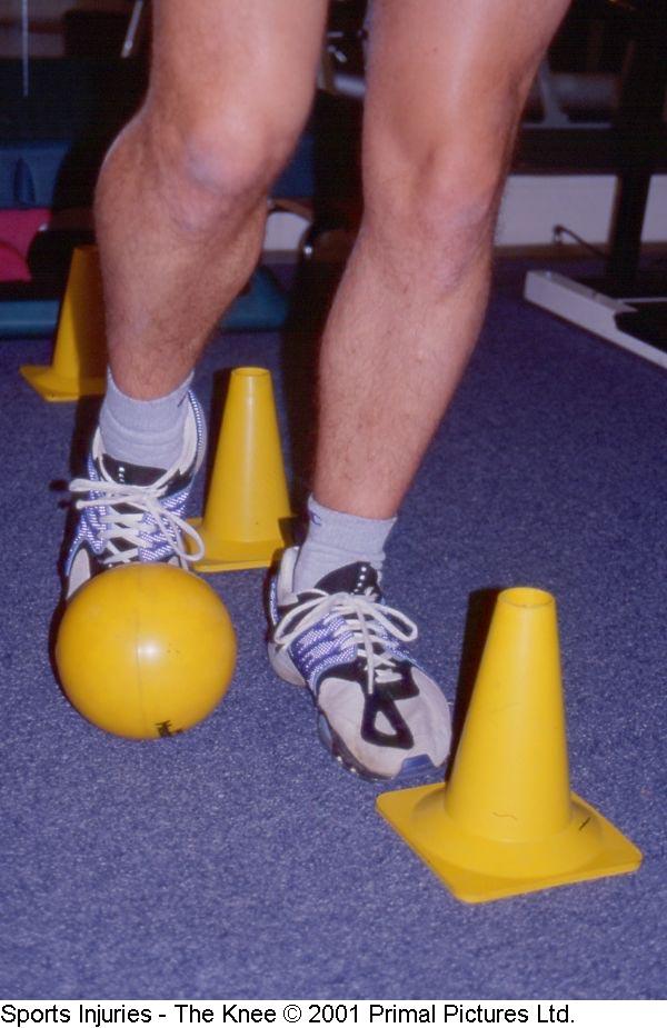 Fig. 18. Treinamento com bola / cones